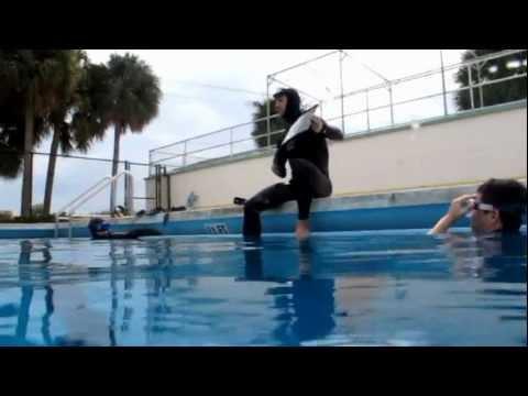 F.I.I. Freediving Courses - www.freedivinginstructors.com