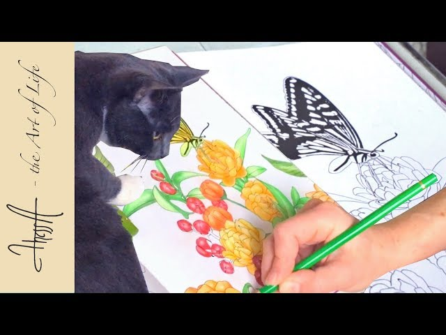Colouring with Faber-Castell polychromos from the colouring book Fleurs