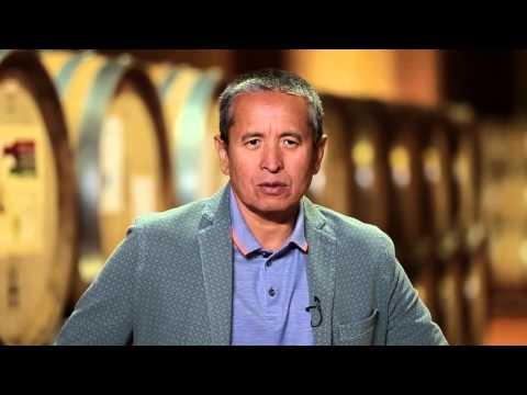 О винах Arba Wine урожая 2013 года