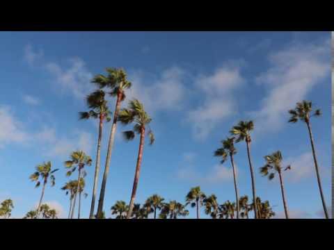 FREE FOOTAGE Palm Springs