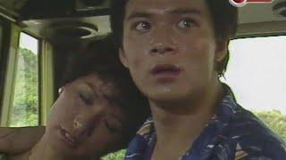 紅顏 1981 詞鄭國江 曲顧嘉煇 唱葉麗儀 TVB 劇集 紅顏.主題曲