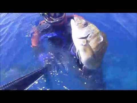 Samos spearfishing 2