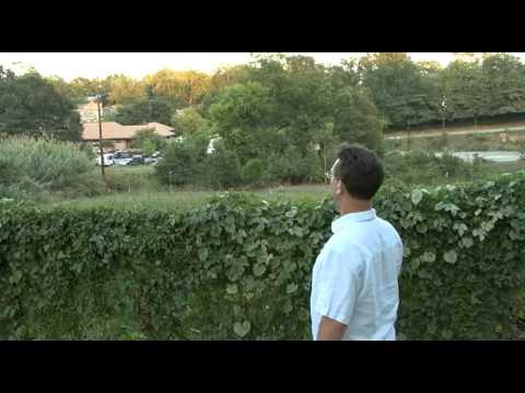 Athens Heritage Foundation Walking Tours - Pulaski Heights with David Bryant