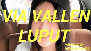 VIA VALLEN - LUPUT(Official Audio)