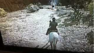 Red Dead Redemption Treasure Ambient Challenges 1 and 2