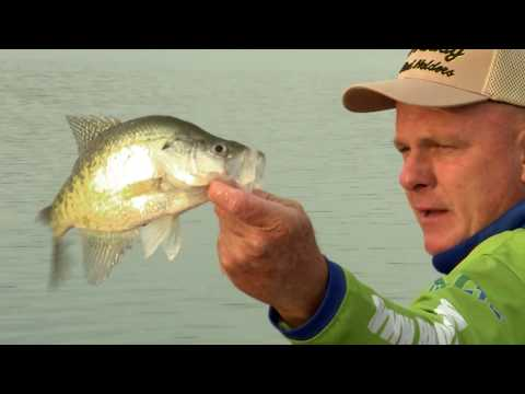 Crappie Fishing on Green River Lake KY with David Green and Russ Bailey