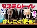 【猫のシステムトイレ】より安く簡単に掃除ができる方法をご紹介!パインウッドと激…