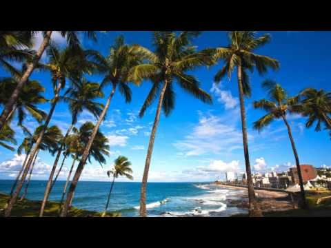 Best Time To Visit or Travel to Salvador, Brazil