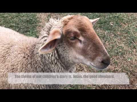 Good Shepherd Children's Story