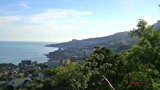 Вид на курорт Мисхор (Марат, Гаспру Кореиз Алупку, Симеиз, гору Кошка, Шаан Кая. View of Mishor