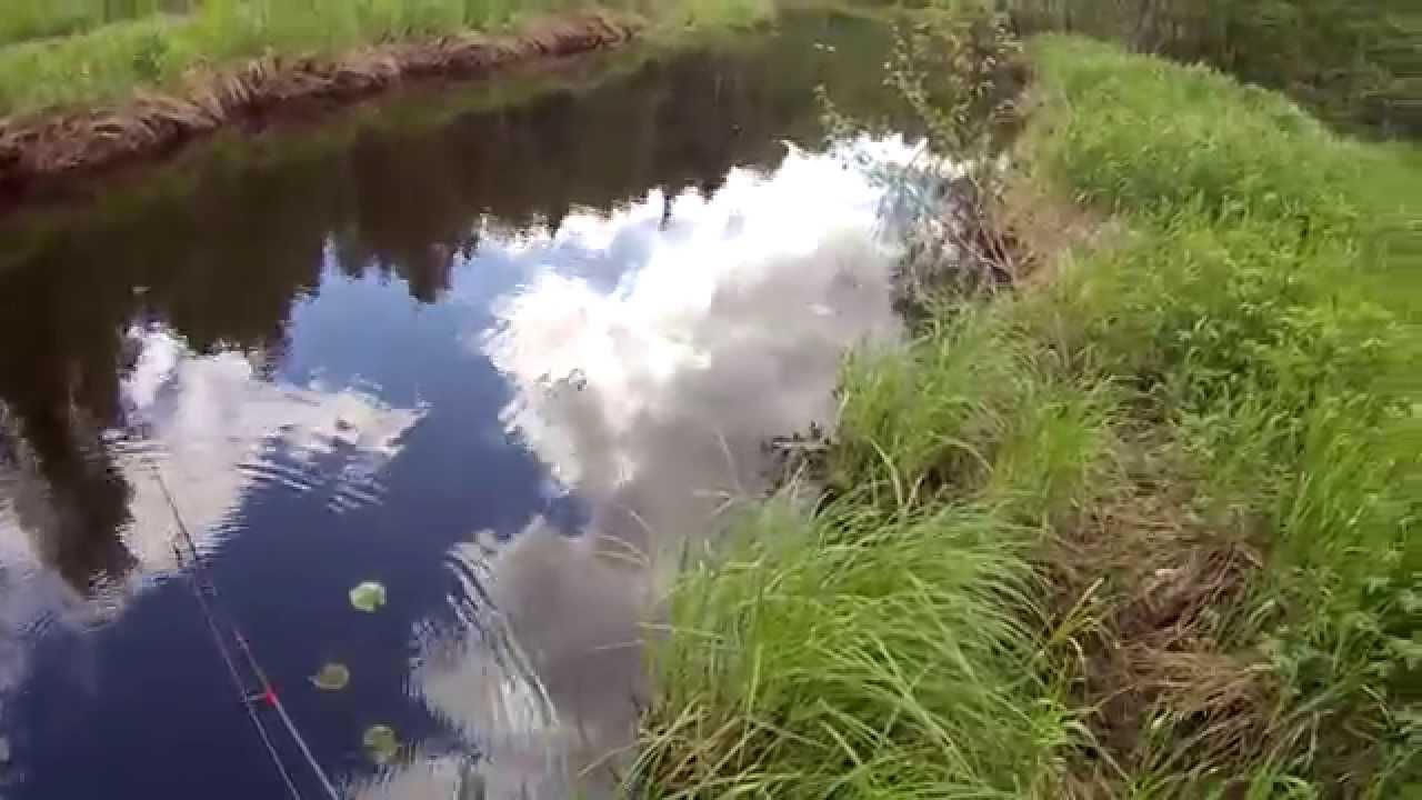 рыбалка на реке эльбузд