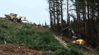 Renner Logging: steep slope operation