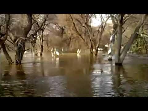 Lake Ngami - 30-09-2011