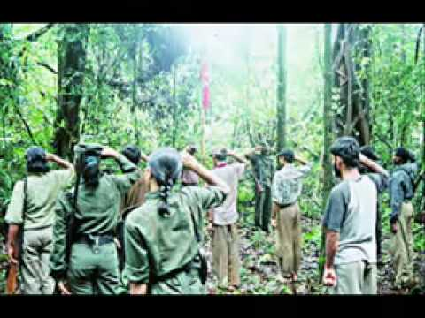 the naxalite revolt why is [essay] naxalism : an ideology or the biggest threat naxalism : an ideology or the biggest threat the revolt took a violent phase.