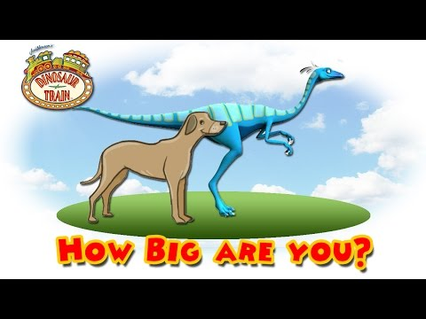 Dinosaur Train : How Big are You?  #13 - Ornithomimus VS Dog @ Make For Kids