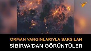 Orman yangınlarıyla sarsılan Sibirya'dan görüntüler