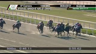 Vidéo de la course PMU PREMIO BRIGHT HALO