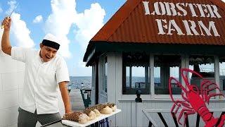Lorenzillo's Lobster Farm Mannequin Challenge