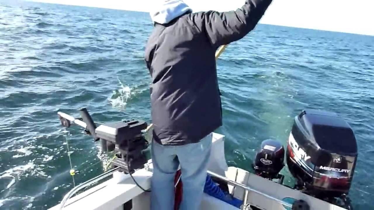 Salmon fishing bodega bay youtube for Bodega bay fishing reports