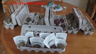 Twelve Varieties of Potatoes and an update