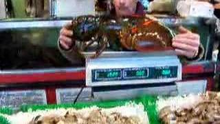 worlds biggest lobster!