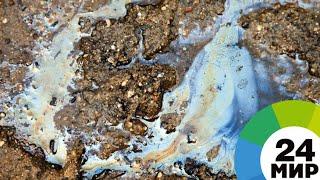 На реке Ангара образовалось нефтяное пятно протяженностью 400 метров - МИР 24