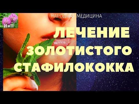 Лечение золотистого стафилококка натуральным аптечным средством на растительной основе