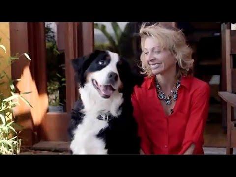 BLUEFANG - Smartphone Dog Trainer