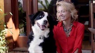 Bluefang - Smart Phone Dog Trainer