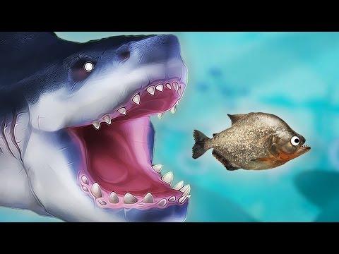 เกมที่ปลาฉลามกลืนกินปลาทั้งตัวอย่างเมามันส์!! | Feed And Grow Let's Play (5)