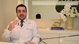 Fragmentação do espermatozóide