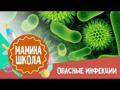 Корь Краснуха Паротит - прививка и план вакцинации