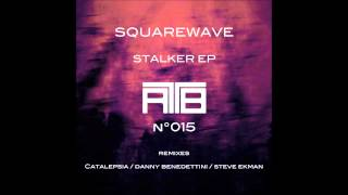 Squarewave (Robot War - Danny Benedettini Remix)