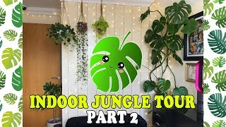 Welcome to the Jungle! Indoor Jungle Tour UK PART 2