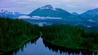 Живые пейзажи природы. Красивая съёмка под приятную музыку.