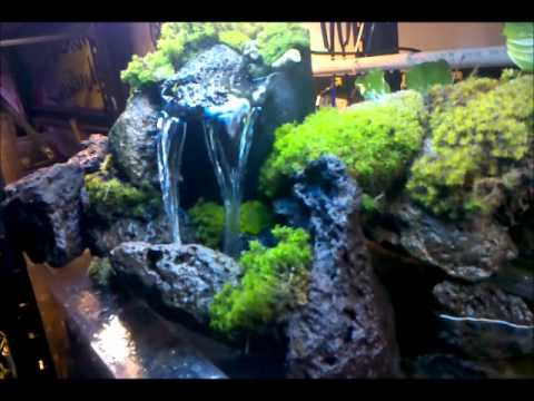 check out my waterfall i built for my 55 gal tank youtube