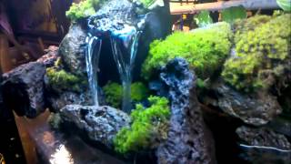 CHECK OUT MY WATERFALL I BUILT FOR MY 55 GAL. TANK