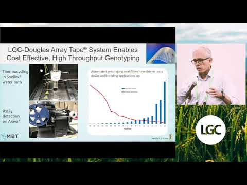 High-throughput genotyping solutions for challenges in commercial plant breeding