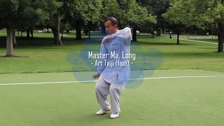 Master Ma, Long - Art Taiji - Section 5