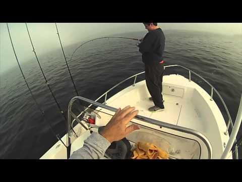 Fishing New Port Rhode Island