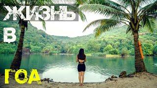 72 Индия Гоа 2020 Жизнь в Гоа Йога в Арамболе Ужас Что случилось со Свитлейк 4к видео