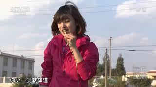 [远方的家]行走青山绿水间 探秘珠江源溶洞| CCTV中文国际