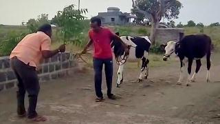 Marathi Funny Video | Subscribe Karayla visru naka | post magazine subscription