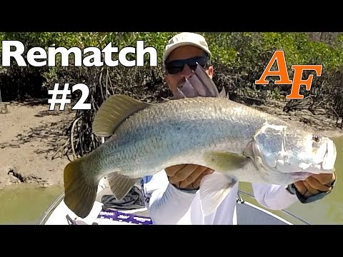 Mangrove Jack Re-match Pt2 Andy's Fish Video EP.308