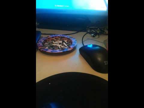 Subwoofer table shake @ Jason Derulo - Wiggle Wiggle