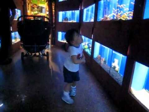 Stephanie freaking out at the Safari Pet Store in the Fish section - Vaughan Mills