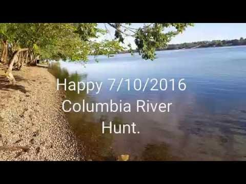 Metal detecting the Columbia River in Tri-Cities.Wa
