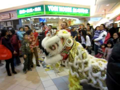Robert`s first Lion Dance at First Markham Place Chinese New Year
