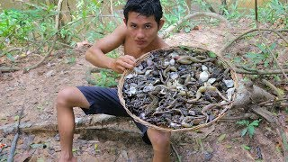 Deep Fried FROGS   Cooking Frog with Egg Recipe in Forest Eating Delicious