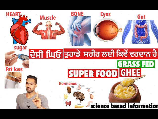 Super food | GRASS FED GHEE  BENEFITS | science based info